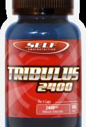 Tribulus 2400